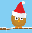 funny bird with christmas hat art vector image