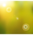 Sun shines brightly vector image