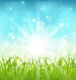 Spring nature background with grass vector image