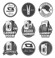 Laundry emblems vector image