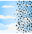 flight of birds vector image