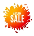 Shiny Autumn Leaves Sale Background vector image