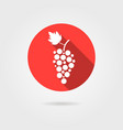 grape icon in red circle with long shadow vector image