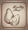 hand drawn avocado healthy food fresh vector image