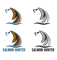 tail of salmon vector image