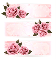 Set of holiday banners with pink beautiful roses vector image vector image