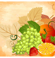 fruit still life vector image