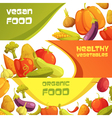 Fresh Organic Vegetables Horizontal Banners Set vector image