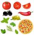 Set Of Products With Pizza vector image