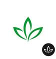 Three green leaf logo Natural plant symbol vector image vector image
