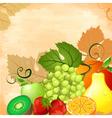 Fruit still life vector image