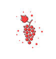 red thin line grape icon vector image
