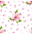 Seamless pattern with sakura blossom and petals vector image