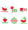 graphic red and green watermelon logo templates vector image