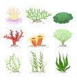 set of underwater plants funny vector image