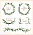 eucalyptus leaves circle round green leaf wreath vector image