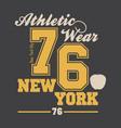 new york city typography graphics vector image