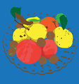 colored autumn fruits vector image