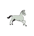 Horse Trotting Side Cartoon Isolated vector image vector image