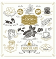 Decorative cocoa schocolate design set vector image