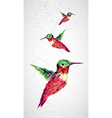 Humming bird geometric vector image