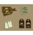 Set of coffee brand identity labels - stickers for vector image
