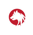 wolf logo template design vector image