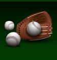 baseball glove with balls vector image