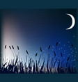 Meadow at night vector image vector image