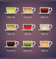 Tea Types Infographics vector image vector image
