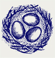 Eggs in nest vector image vector image