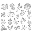 doodle fruits and vegetables vector image