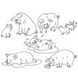 set of cute cartoon pigs vector image