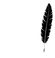 feather isolated on white vector image