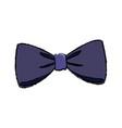 bow decoration elegant ribbon image vector image