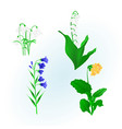 spring flowers lily of the valley vector image