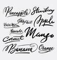 mango fruit and strawberry hand written typography vector image