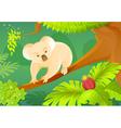 Cartoon koala on a jungle background vector image