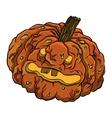 funny rotten pumpkin vector image