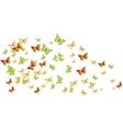 butterflies swarm vector image