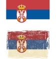 Serbian grunge flag vector image vector image