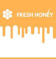 fresh honey drop vector image