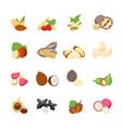 cartoon color nuts icons set vector image