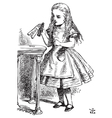 Drink me Alice vector image