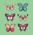 collection of six hand drawn colorful butterflies vector image