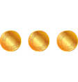 gold pattern medal vector image