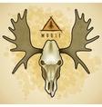 Moose skull vector image