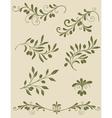 Olive decorative vector image
