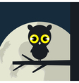owl sits vector image