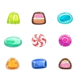 Multi-coloured Sweets Set vector image